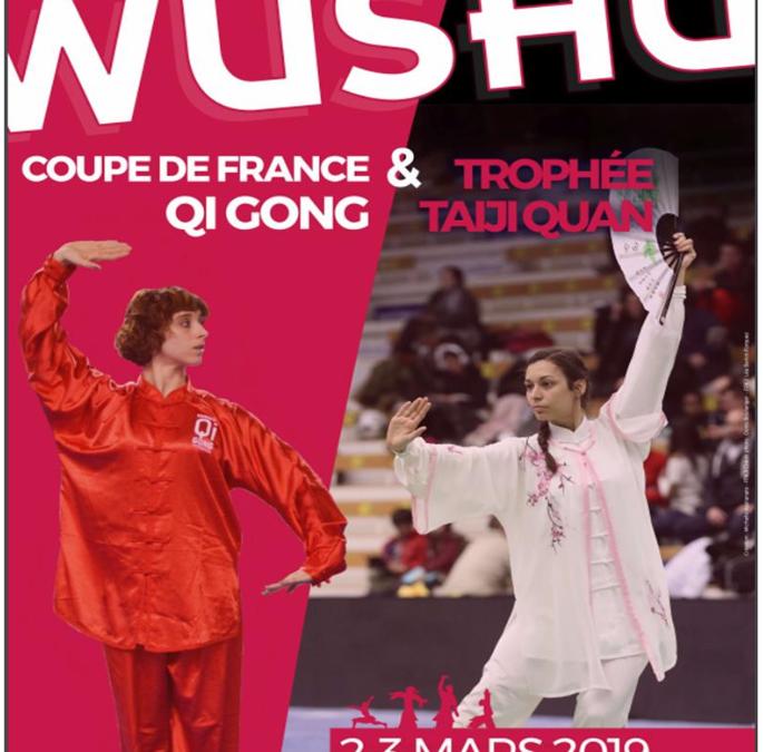 Coupe de France Qi Gong et Trophée Taiji Quan à Pessac