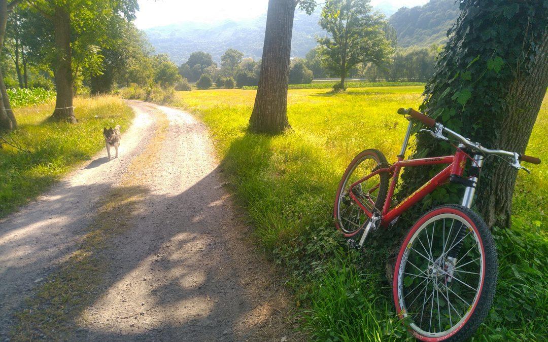 Traces GPS VTT: Agos-Vidalos – Berges du Gave – Boo-Silhen – Lugagnan – Agos Vidalos